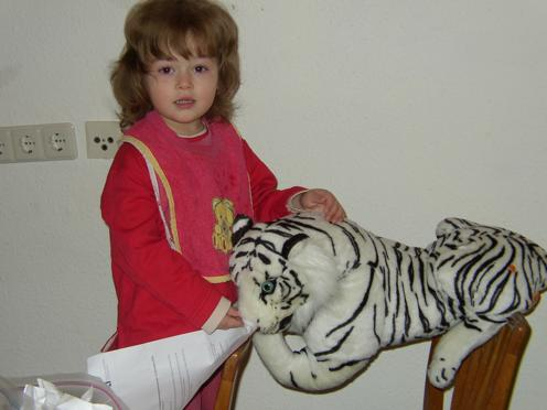 how Kimberly feeds her tiger